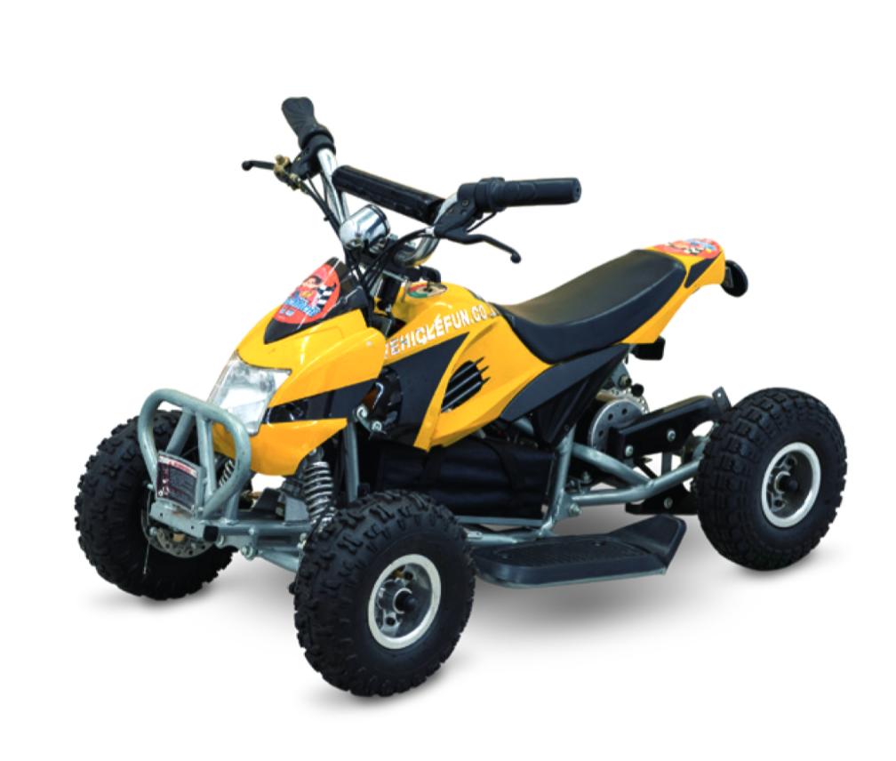 800W 電動QUAD KIDS ATV 2020